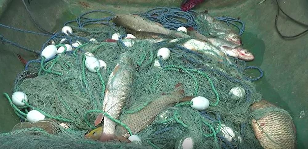 Veste teribilă pentru braconieri. Pescuitul ilegal s-ar putea pedepsi cu până la 8 ani de închisoare