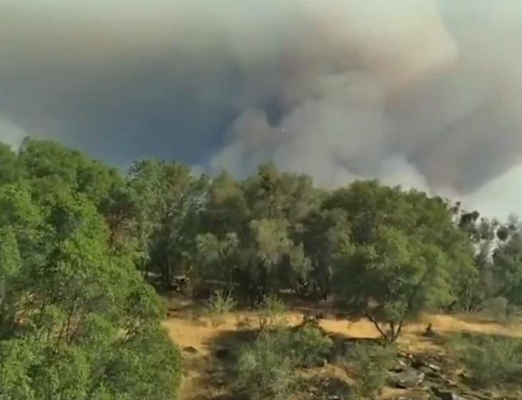 Arde vestul Statelor Unite. Sute de mii de hectare de vegetaţie au fost mistuite de flăcări