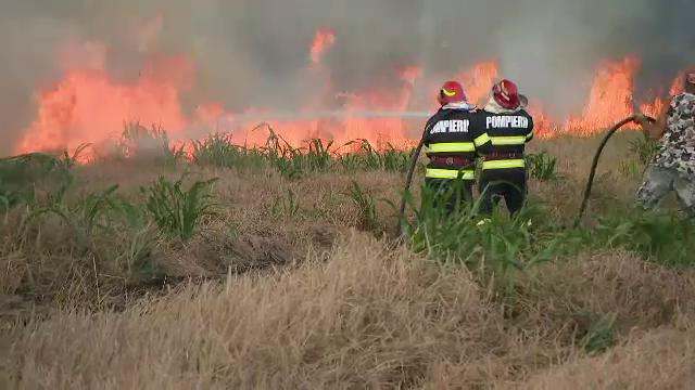 Incendiu violent în apropierea unui centru comercial din Agigea, izbucnit de la o țigară aprinsă