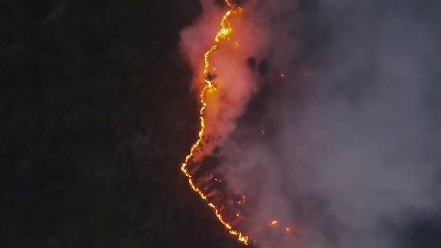 Cea mai secetoasă vară din ultimii 150 de ani în Siberia. Incendiile de vegetație devastează regiunea