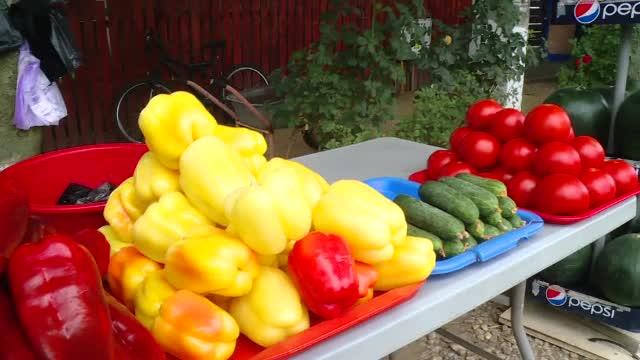 Coșmarul fermierilor români. An bun pentru legume, dar nu au cui să le vândă: O să renunț, o să le distrug