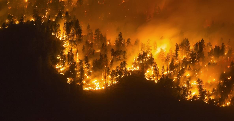 VIDEO. Incendiile fac prăpăd în Canada. Autoritățile au decretat stare de urgență în vestul țării
