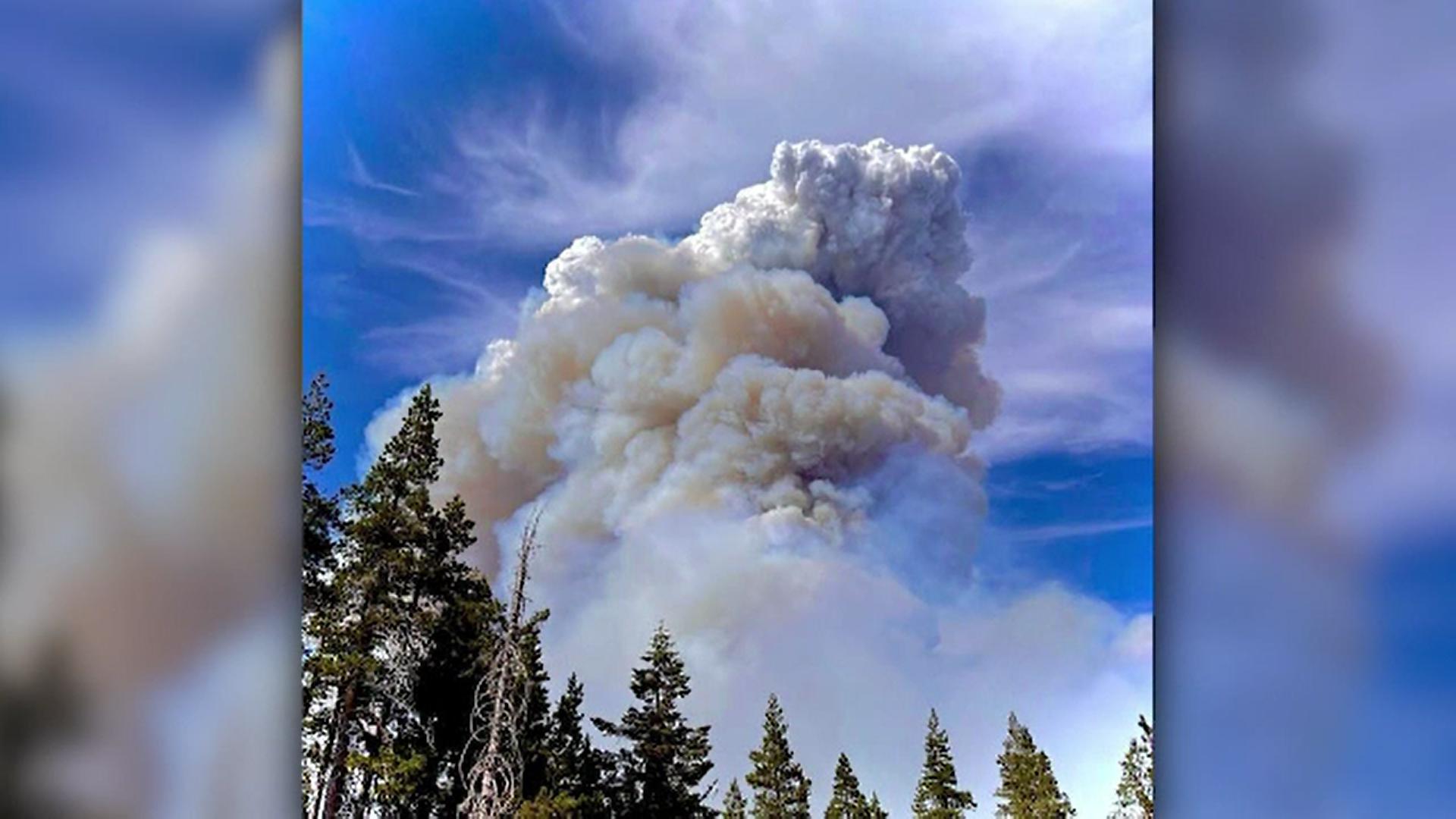 Incendii majore în SUA. Flăcările distrug în fiecare oră sute de hectare de pădure