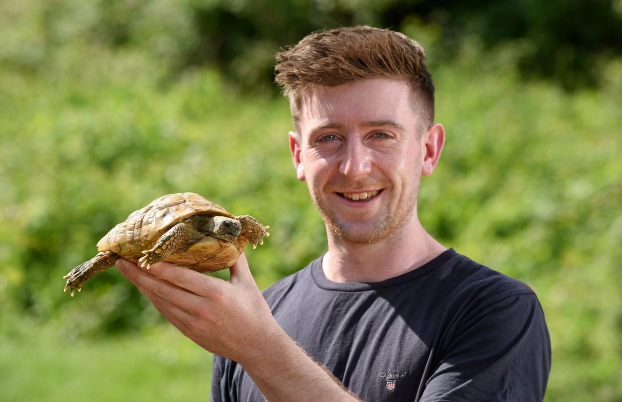 """O broască țestoasă care a """"fugit"""" de acasă în urmă cu un an, găsită la o distantă apropiată de domiciliu"""