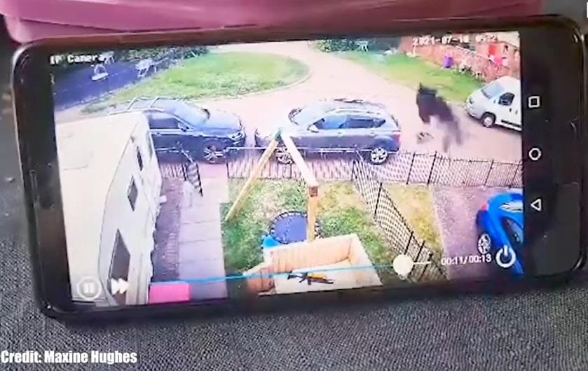 O femeie a chemat preotul să sfințească locuința, după ce a urmărit imaginile de pe camera de supraveghere. VIDEO