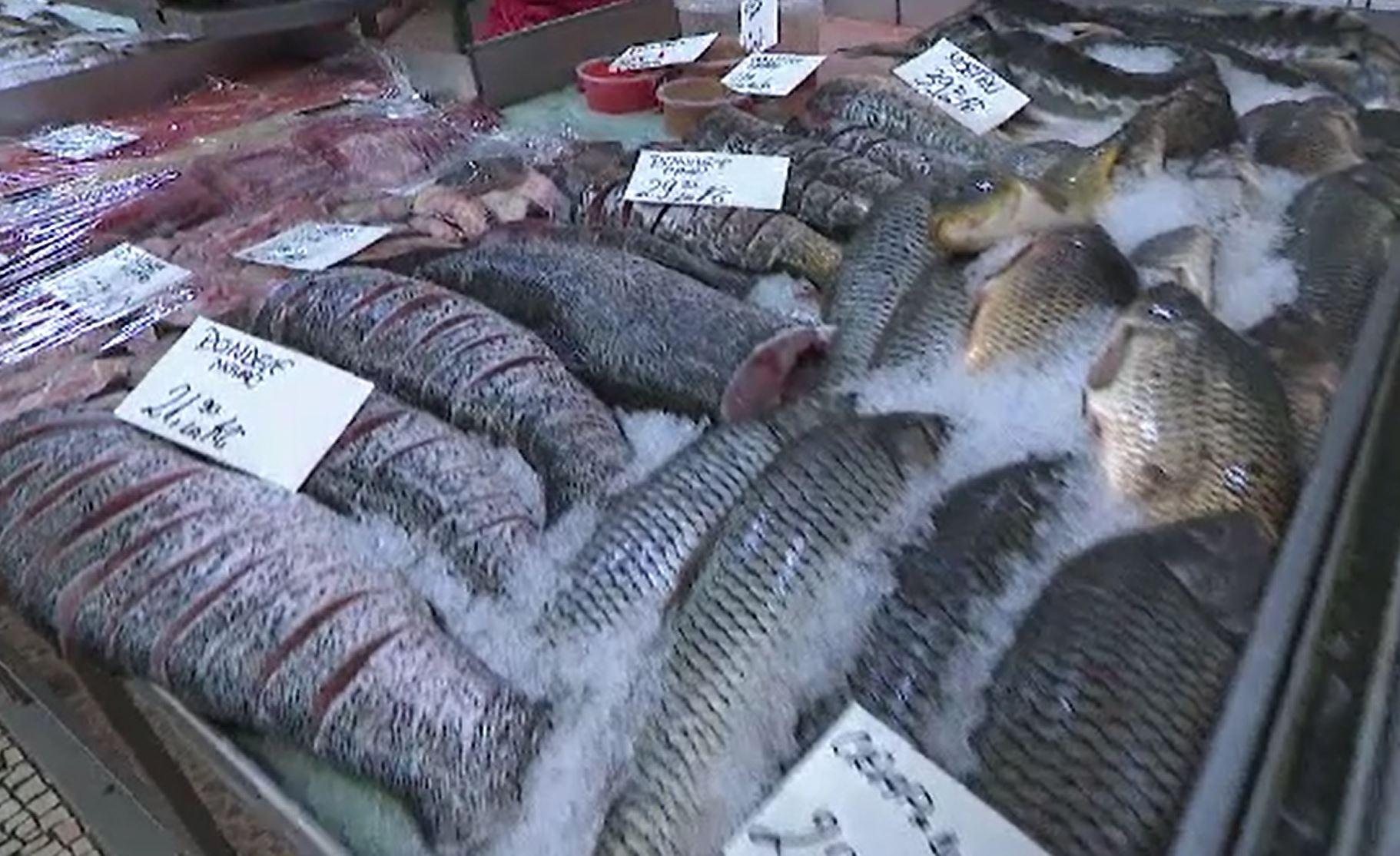 Fermele piscicole, tot mai populare în România. UE pune la bătaie fonduri importante pentru cei care vor o astfel de afacere