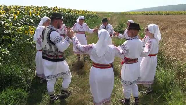 Comuna în care obiceiul secerișului este păstrat cu sfințenie. În straie populare și cu secera în mână