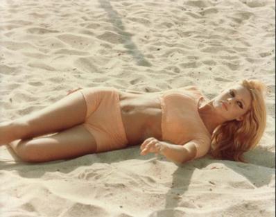 Un leu a calatorit pana in Africa pe banii lui Brigitte Bardot