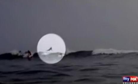 VIDEO uimitor. Momentul in care un surfer vede un rechin sarindu-i deasupra capului