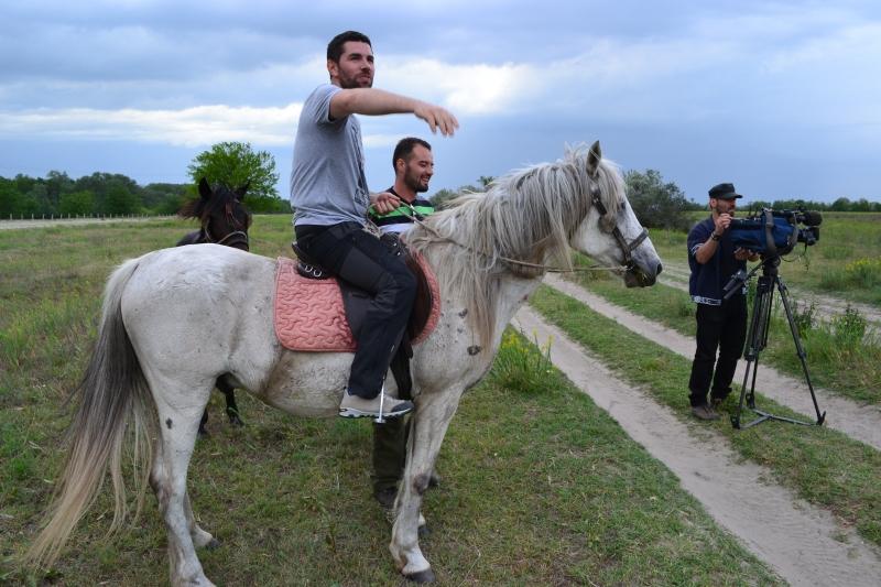 Caii de la LETEA – o ancheta de Alex Dima la Romania, te iubesc