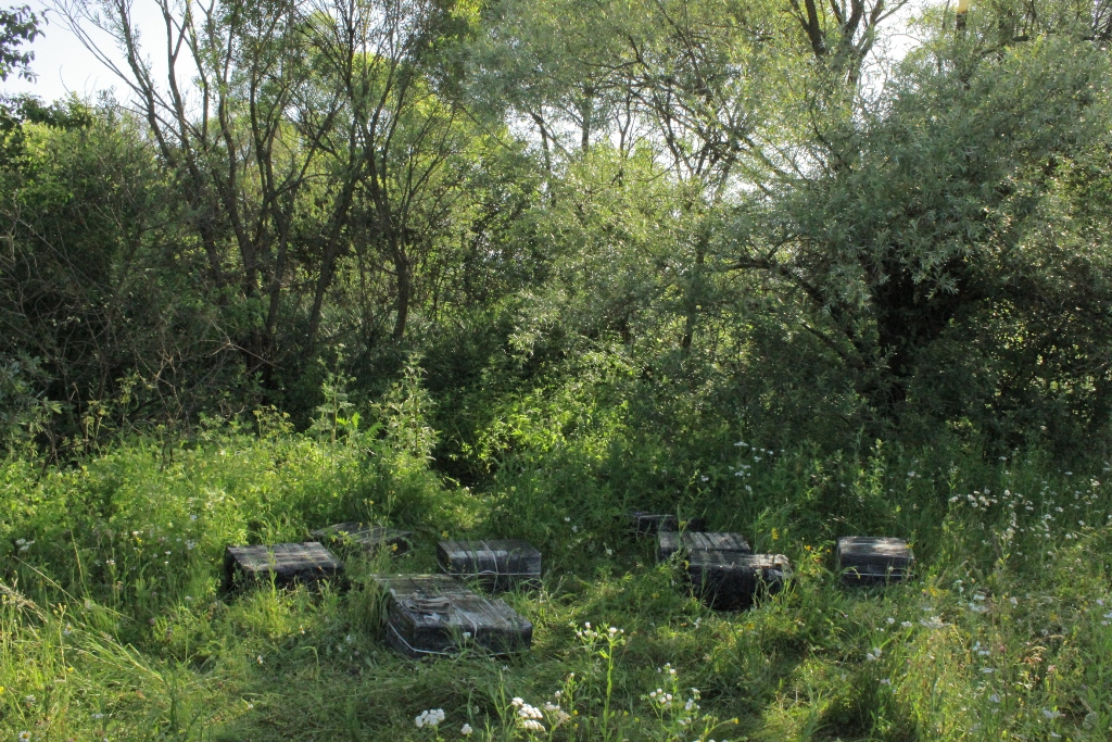 Mii de pachete de tigari de contrabanda au fost retinute la granita cu Ucraina