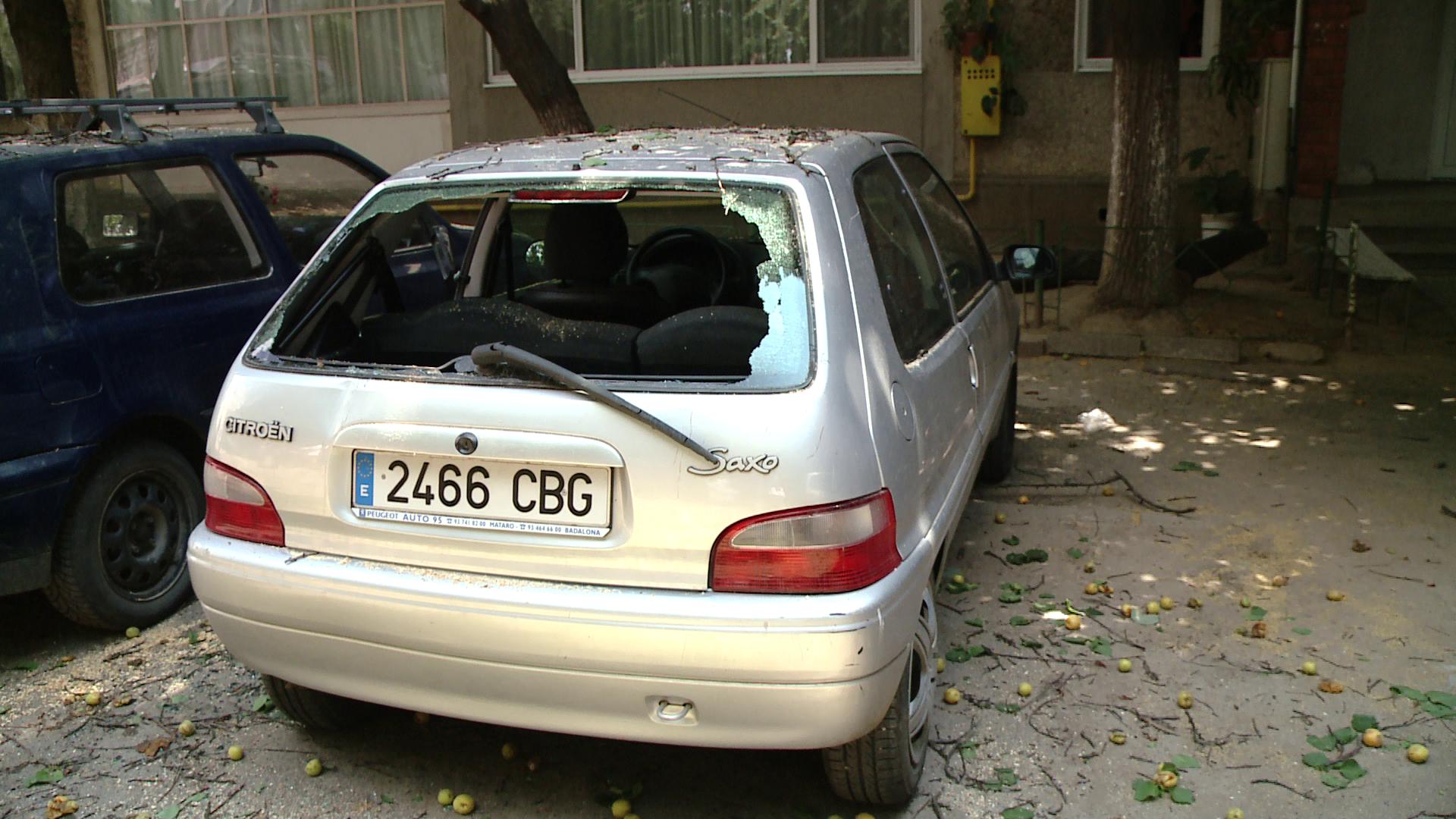 Un pom plin cu caise s-a rupt din cauza rodului si a cazut peste doua masini
