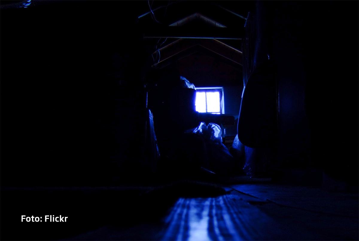 Si-a cumparat o casa si a inceput sa auda zgomote bizare din pod. Ce scriitoare celebra se ascundea acolo
