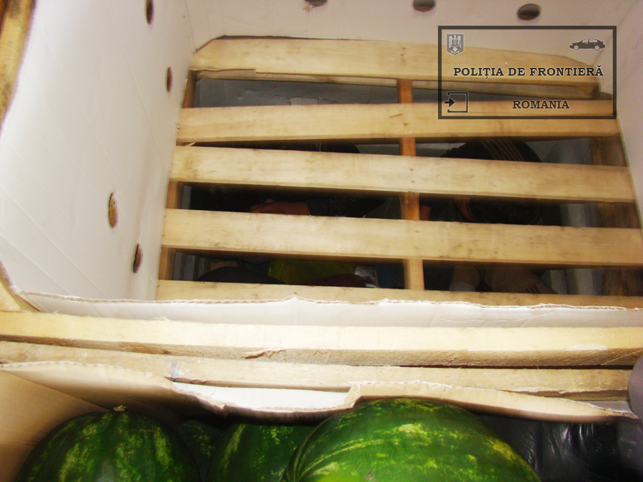 Ce au gasit politistii de frontiera de la Calafat intr-un camion cu pepeni. Soferul habar nu avea ce transporta. VIDEO