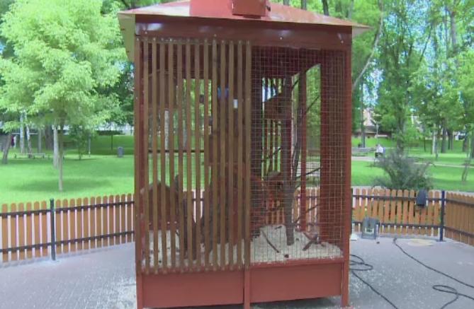 Dupa ce au dat 3000 de euro pe o cusca speciala pentru veverite, au mai si ingradit-o. Gafa autoritatilor din Bistrita