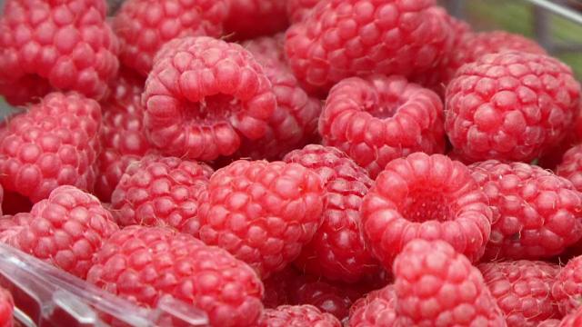 Fructul-vedeta al inceputului de vara i-a facut pe producatori sa simta gustul afacerii. Cu cat se vinde un kg de zmeura