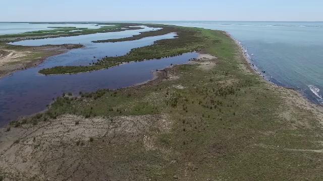 Musura si Sacalin, cele mai noi insule din Delta Dunare, ofera peisaje ca-n Maldive. Cum pot fi vizitate si ce gasiti aici