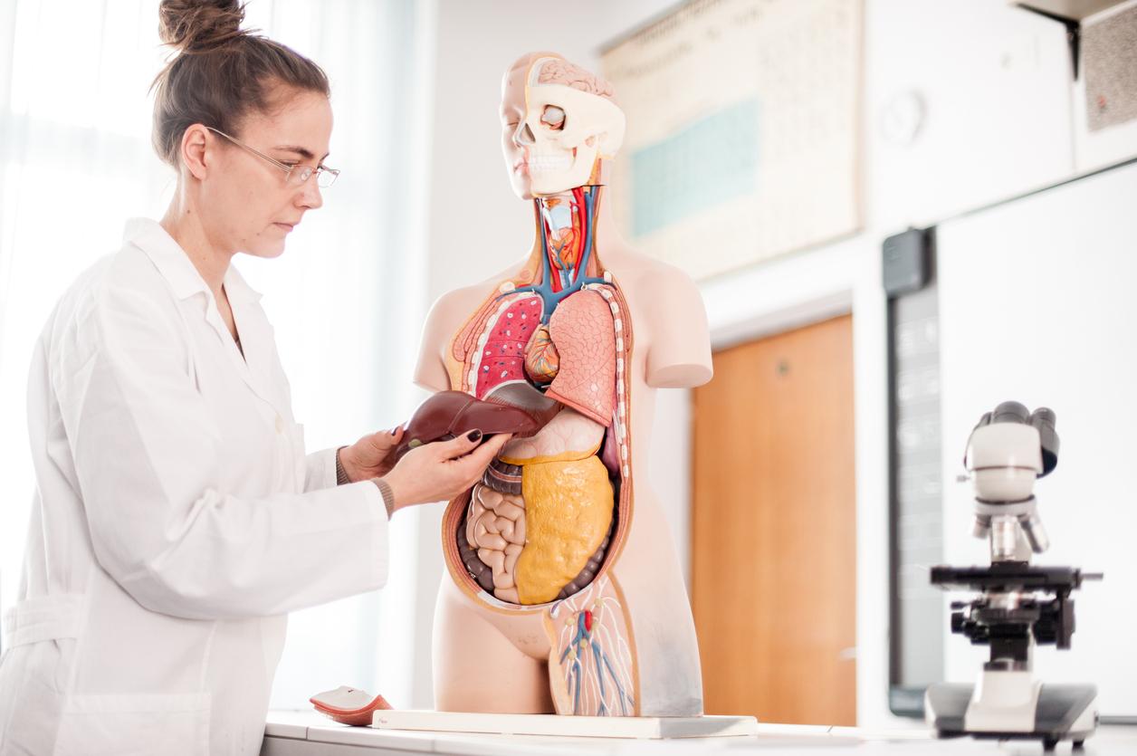 Dacă avem un nivel crescut al transaminazelor, înseamnă că ficatul suferă. Care este principala cauză