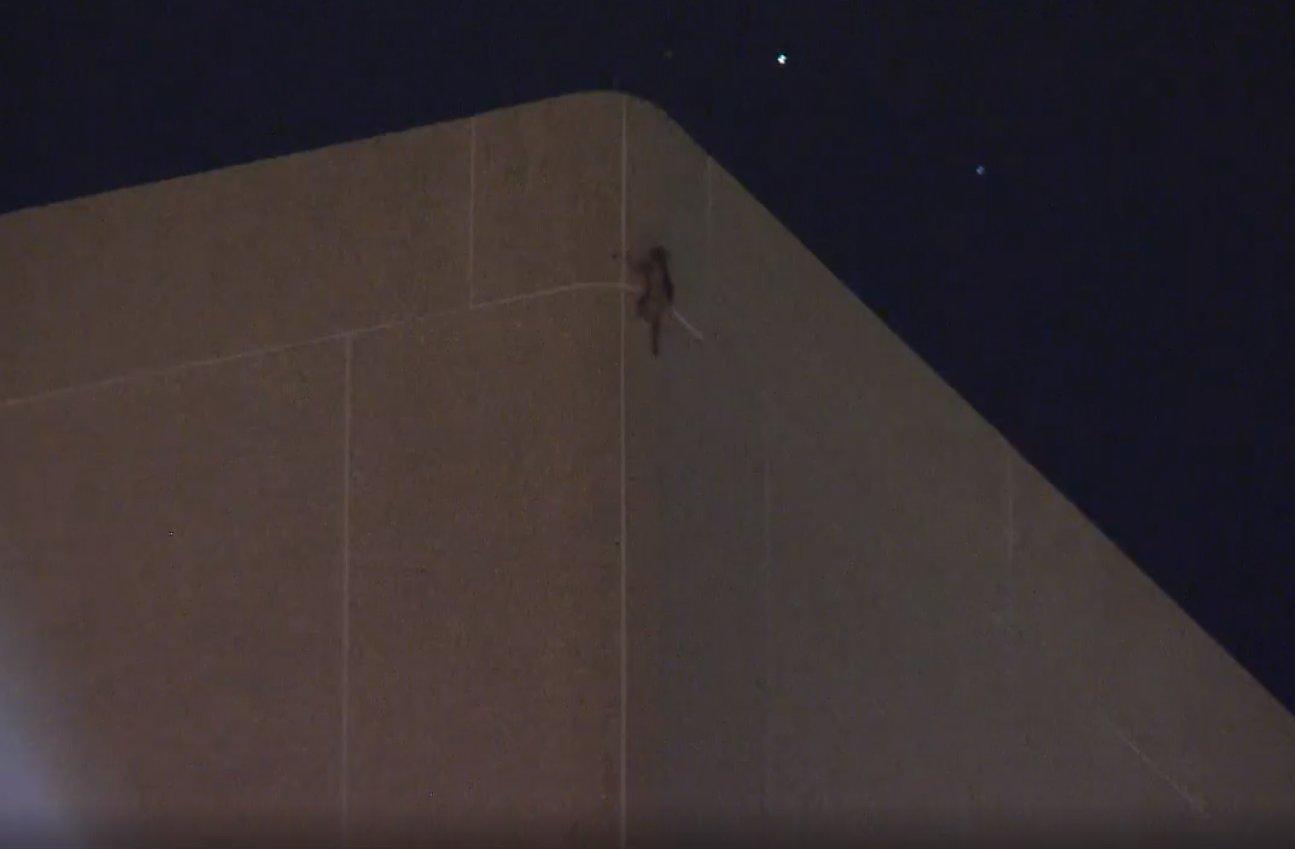 Raton, surprins cățărându-se la ultimul etaj al unui zgârie-nori. Cum a ajuns acolo. VIDEO