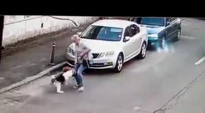 VIDEO. Caine atacat de un Amstaff lasat liber. Cinci oameni s-au luptat cu animalul