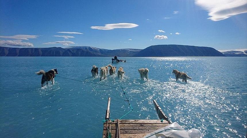 Fotografia uluitoare care arată fața dezastrului din Groenlanda, după topirea gheții