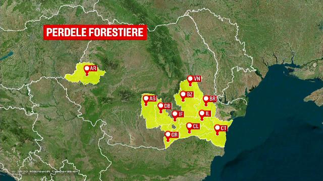 Romsilva a reușit să planteze doar 32 de km de perdele forestiere în 18 ani. Ce spune ministrul Mediului