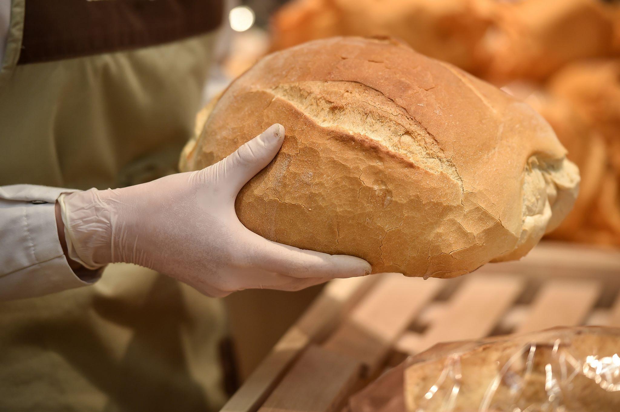 Aducem pâine și paste din afară, deși suntem al doilea exportator de grâu din Europa. Care este motivul