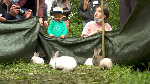 """Bucurie printre copiii care au mers la expoziția de animale mici de la USAMV Cluj-Napoca. """"Am promis să vin aici"""""""