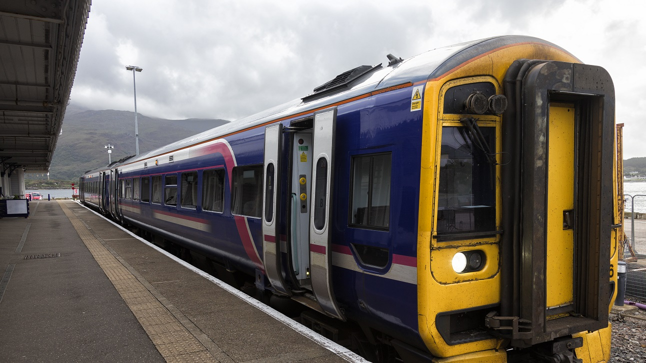 O tânără de 28 de ani a scos capul pe fereastra unui tren și a fost ucisă de o ramură de copac