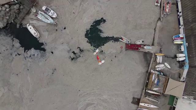 """Marea Marmara, plină de o substanță vâscoasă. Ce este și cum apare """"mucilagiul marin"""""""