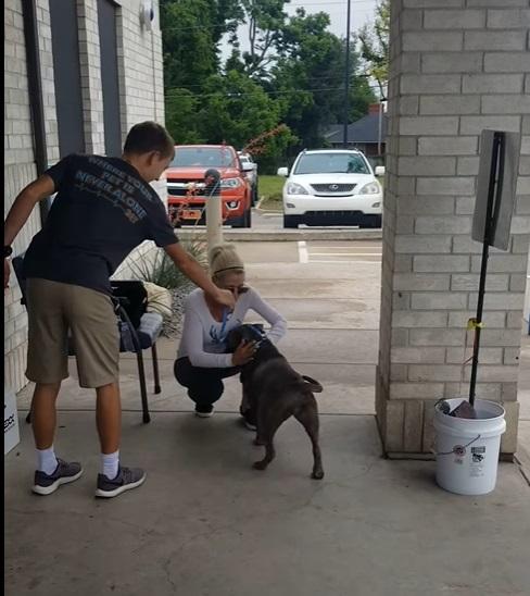 Momentul emoționant în care o femeie își regăsește câinele pierdut în urmă cu un an