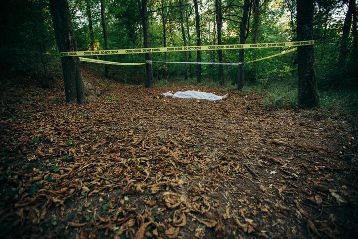 Descoperire macabră într-o pădure din Zalău. Poliția a fost sesizată de urgență după ce un localnic a găsit un cadavru