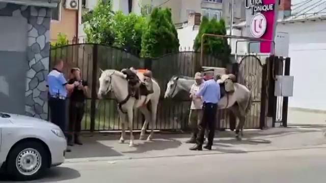Întâmplare inedită în Craiova. Doi turiști străini s-au rătăcit după ce plecaseră spre Castelul Bran