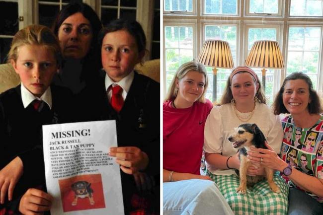 Povestea emoționantă a unui cățel care și-a regăsit familia după 11 ani