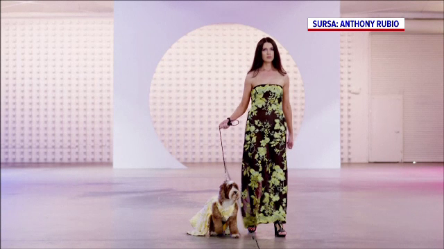 Un celebru designer de haine pentru câini și-a expus creațiile într-un eveniment organizat la Los Angeles