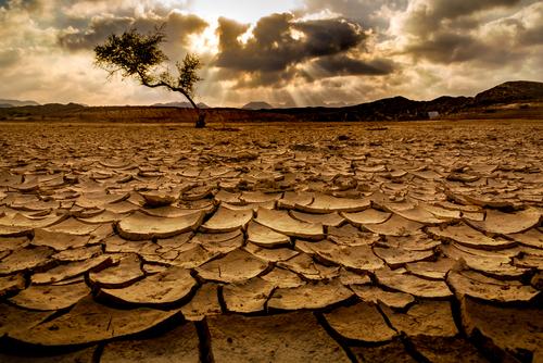 """Raport ONU: Viața pe Terra peste 30 de ani, dominată de crize și foamente. """"Omenirea nu mai poate"""""""