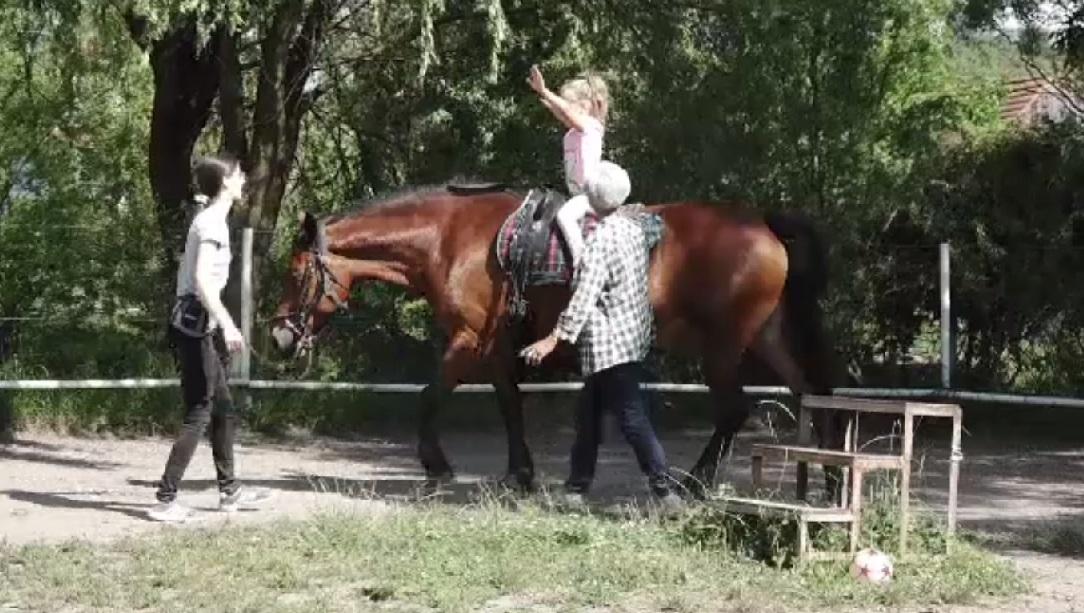 Cum funcționează terapia cu cai în cazul copiilor cu dizabilităţi