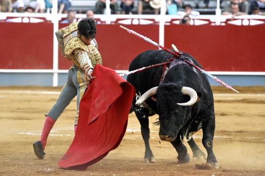 Barcelona a spus adio traditiei sangeroase. Sase tauri omorati in ultima corida. IMAGINI SOCANTE