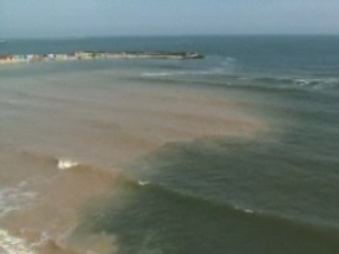 Accident ciudat: un marinar a murit dupa ce a cazut in mare de pe o nava