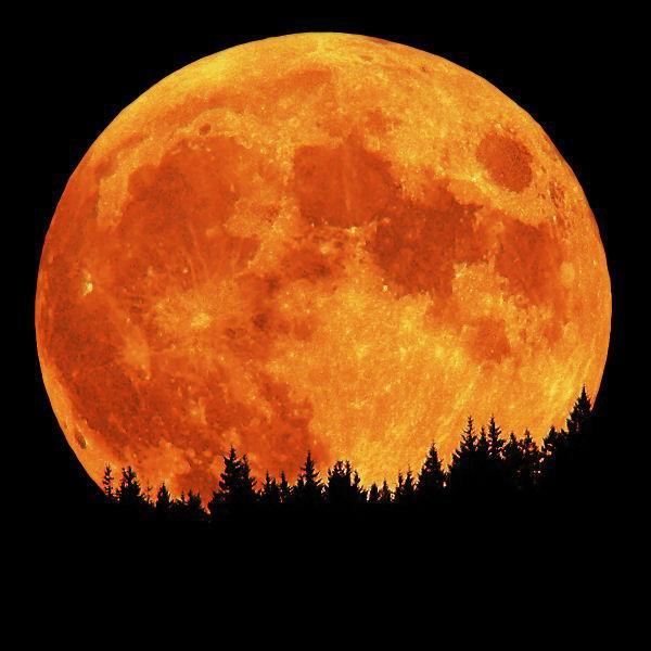 Super-Luna. Satelitul natural al Terrei se va apropia de noi tot mai mult, in urmatorii ani