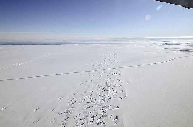 Nivel record de topire a ghetarilor in Arctica si Groenlanda. Ce spun oamenii de stiinta