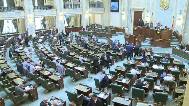 15 fosti si actuali parlamentari, acuzati de conflict de interese. Printre ei, Oana Niculescu Mizil