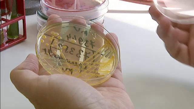 Infectie cu o bacterie ucigasa, depistata la Spitalul de Urgenta din Focsani. Un pacient a murit din cauza complicatiilor