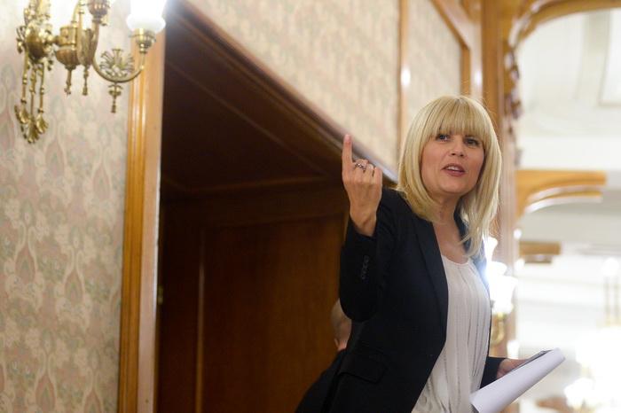Elena Udrea, dupa ce DNA i-a iertat pe Dinu Pescariu si Claudiu Florica, in dosarul Microsoft: Kovesi lasa in libertate hotii