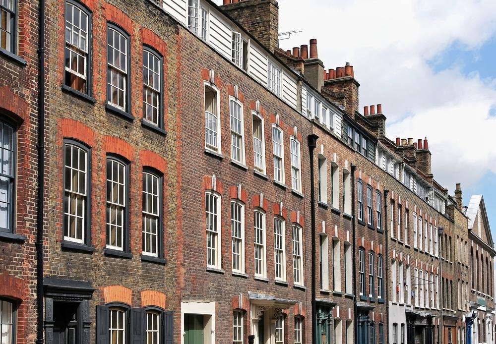 Un sobolan urias ar fi fost capturat la subsolul unui bloc de apartamente din Londra. Cum arata rozatoarea in realitate