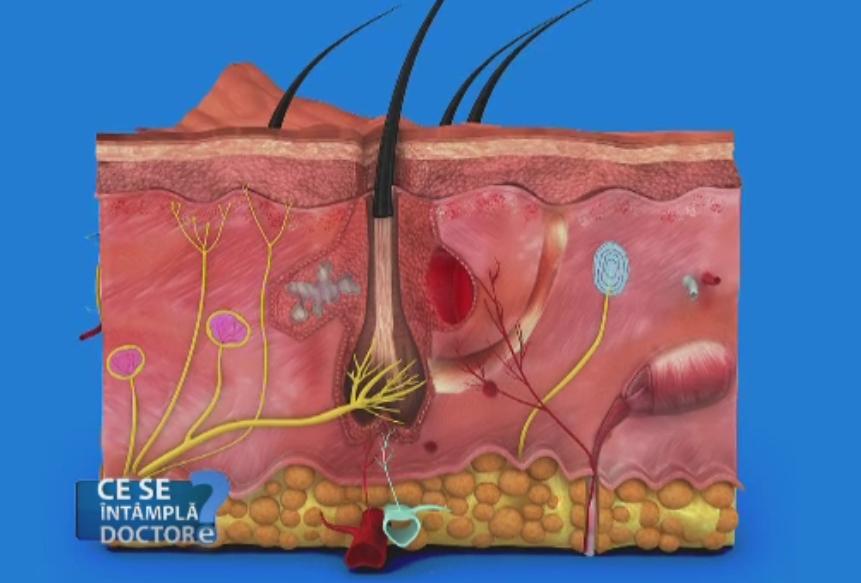 Dupa 40 de ani, parul femeilor poate fi afectat de jocurile dintre hormoni. Remedii pentru alopecia difuza