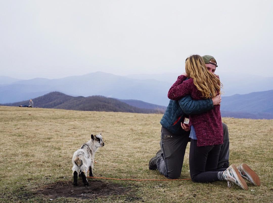 Cerere in casatorie inedita, pe varf de munte. Un barbat si-a cerut iubita de sotie cu ajutorul unui pui de capra. VIDEO