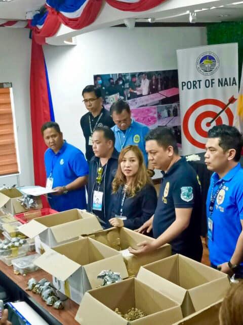 Descoperire uimitoare in 2 valize abandonate pe aeroportul din Manila. GALERIE FOTO