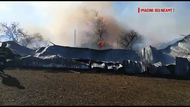 Mai multe animale au ars de vii în urma unui incendiu. 2 oameni s-au intoxicat cu fum