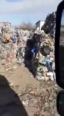 (P) Traseul ilicit al deșeurilor pe ruta Anglia - Constanța, Napoli - Bihor, București - Ulmeni - Utiltrailer